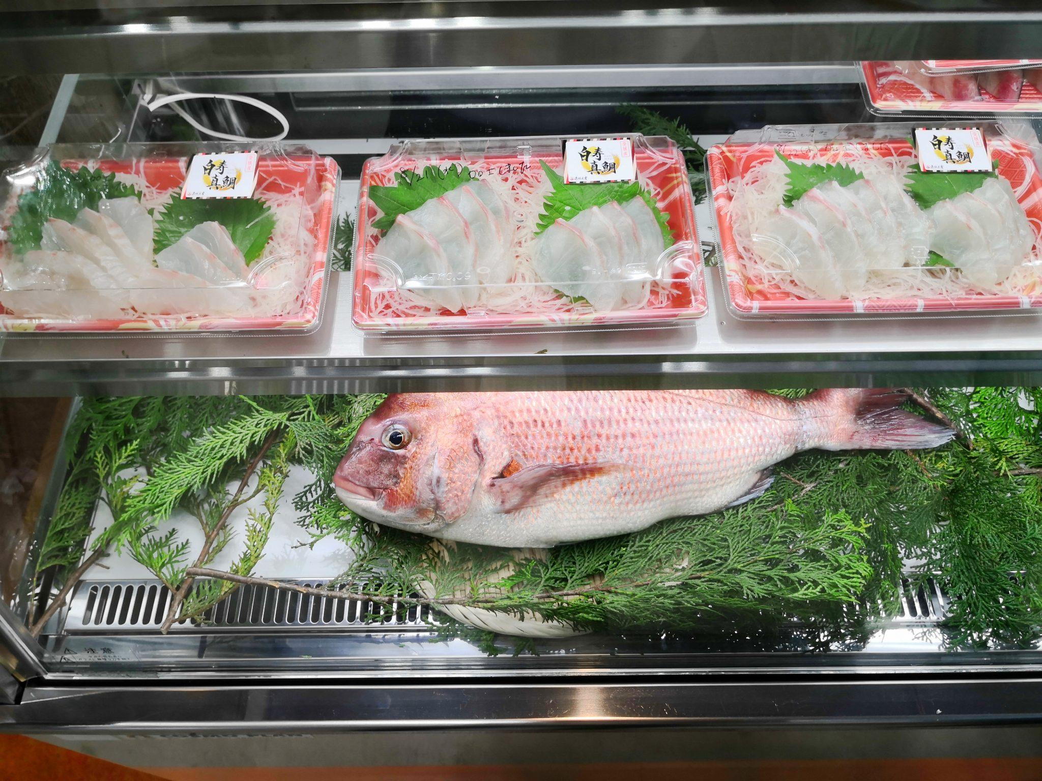 ディスプレイに並んだ白寿真鯛